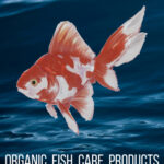 Organic Fish Care Products